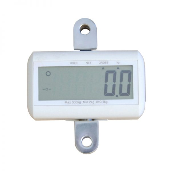 eva floor lift scale handicare