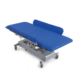 MONA Care and Treatment Table